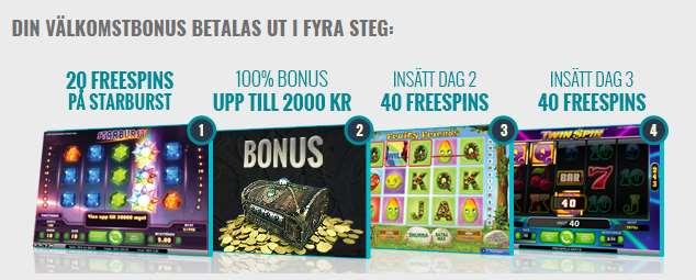 Viking Slots Bonusar